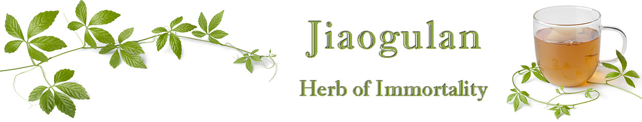 Jiaogulan.org